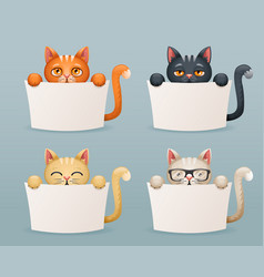 beggar cats animals need help paws hold blank vector image vector image
