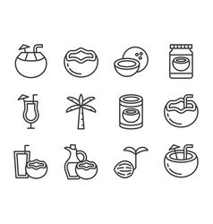 cute coconut icon set vector image