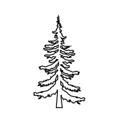 Fir-tree pine tree line icon outline vector