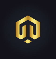 shape line polygon business gold logo vector image vector image