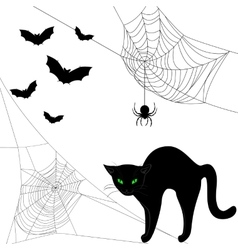 webs black cat and bats vector image vector image