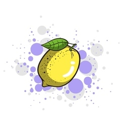 Bright Juicy Lemon vector