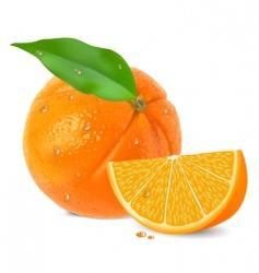 orange segments background vector image vector image