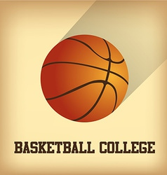 an isolated basketball ball and text on a colored vector image