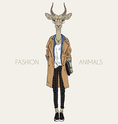 antelope dressed up in modern style city look vector image