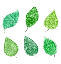 Green leafs with henna patterns vector