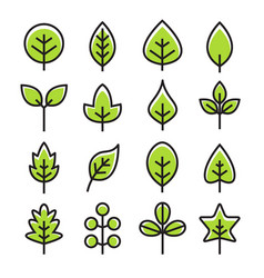 Leaf design line icon green line leaf vector