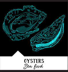 oysters for a seafood menu vector image