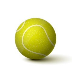 Realistic Tennis Ball Icon vector