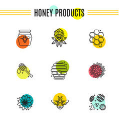 Set of icons of beekeeping honey apiary vector