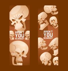 skull pattern dead head crossbones human vector image
