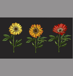 Three hand drawn yellow and red daisy flowrs vector