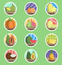 Tropical Fruit Flat Icon vector