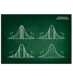 Normal Distribution Diagram on Green Chalkboard vector image vector image