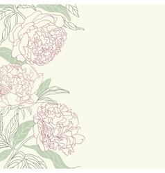 Hand drawing tenderness peony flowers frame vector image vector image