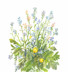Bouquet of forget-me-nots with watercolor vector