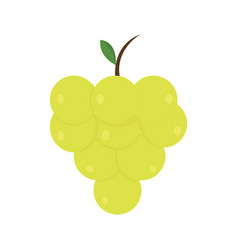 grape icon on white background for graphic and web vector image