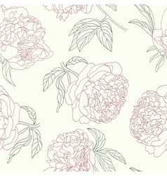 Hand drawing tenderness peony flowers beautiful vector image