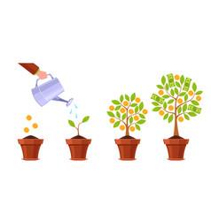 hand watering money tree financial plant golden vector image