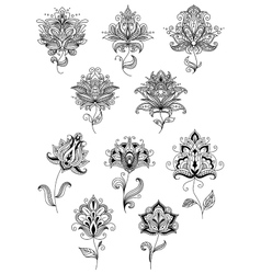 Vintage floral paisley elements and blossoms vector image vector image