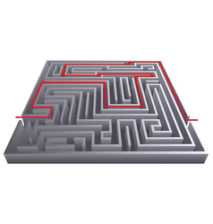 Way pass intricacy labyrinth isometric maze vector