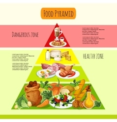 Food Pyramid Concept vector image
