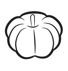 Black and white coloring pumpkins halloween day vector