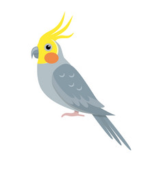 Corella parrot icon in flat style vector