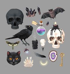 high detailed black magic supplies set vector image