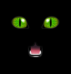 Realistic 3d cat face on a black background vector
