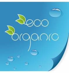 eco and organic logos vector image
