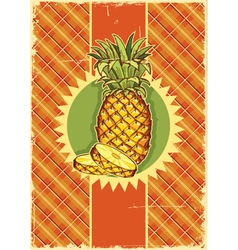 Pineapple fruit on vintage vector image vector image