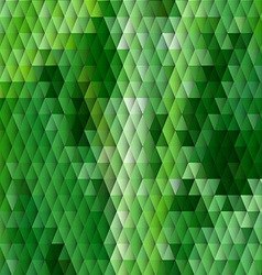 Grass themed background with diamond grid vector image vector image