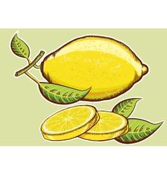 Yellow fresh lemons with green vector image