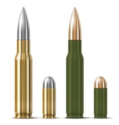 Rifle and pistol bullets vector image vector image