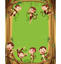 Border design with monkeys on the tree vector image vector image