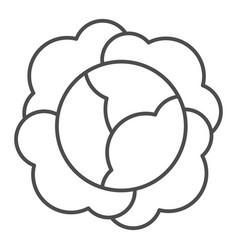Cabbage thin line icon vitamin food vector