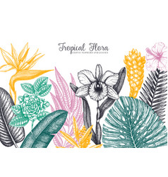 exotic flora frame tropical plants exotic flowers vector image