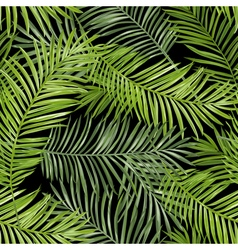 Seamless Pattern Tropical Palm Leaves Background vector