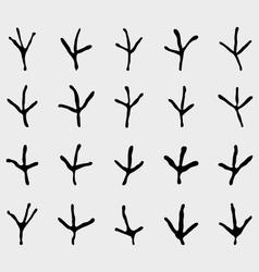 Traces of birds vector