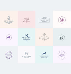 twelve abstract feminine signs or logo vector image