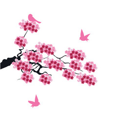 cherry birds vector image