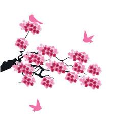 cherry birds vector image