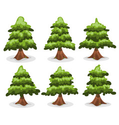 Pine trees and firs collection vector