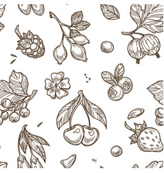 Berries sketch seamless pattern background vector
