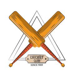 cricket club sport vector image