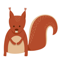 cute squirrel cartoon animal character vector image
