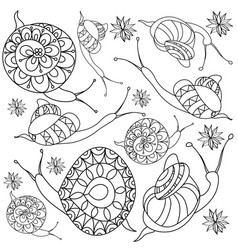 hand-drawn snail with flowers vector image
