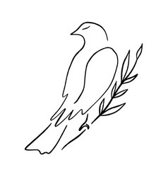 line art dove sitting pigeon logo drawing black vector image