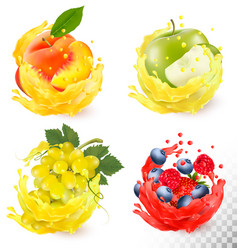 Set of fruit juice splash grapes apple peach vector